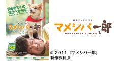 20120404_news_398