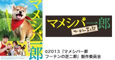 20130219_news_12