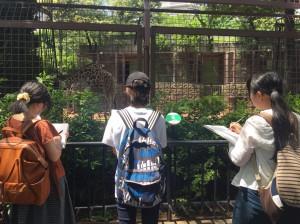 上野動物園2018_180517_0012