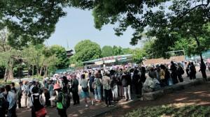 上野動物園2018_180517_0025