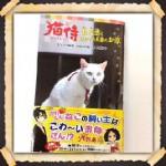 猫侍児童版
